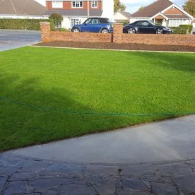 A domestic front path and lawn.